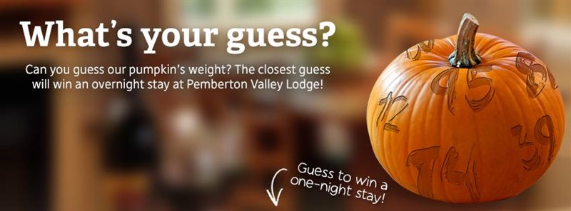 2013 Guess the Weight of the Pumpkin Promotion