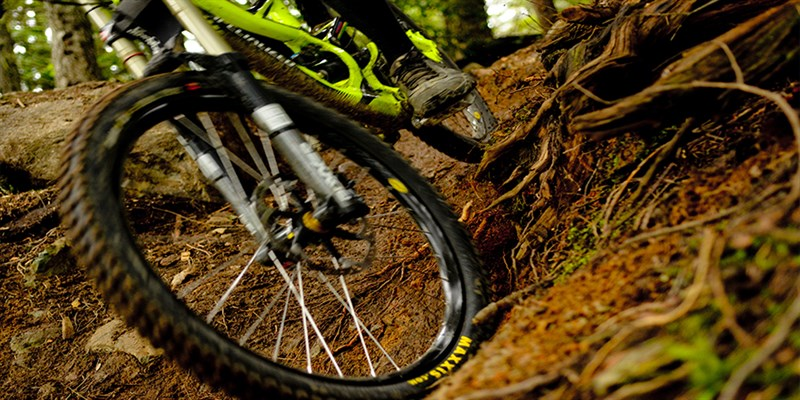 Pemberton Mountain Bike Trails