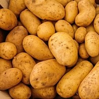 Quirky Pemberton Potato Facts and Trivia