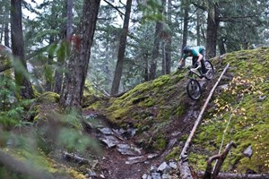 Mountain Biking in Pemberton