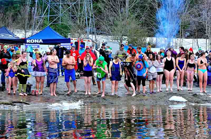 Winterfest Polar Bear Plunge