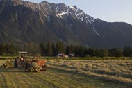 Farming with a view of Mount Currie, Pemberton
