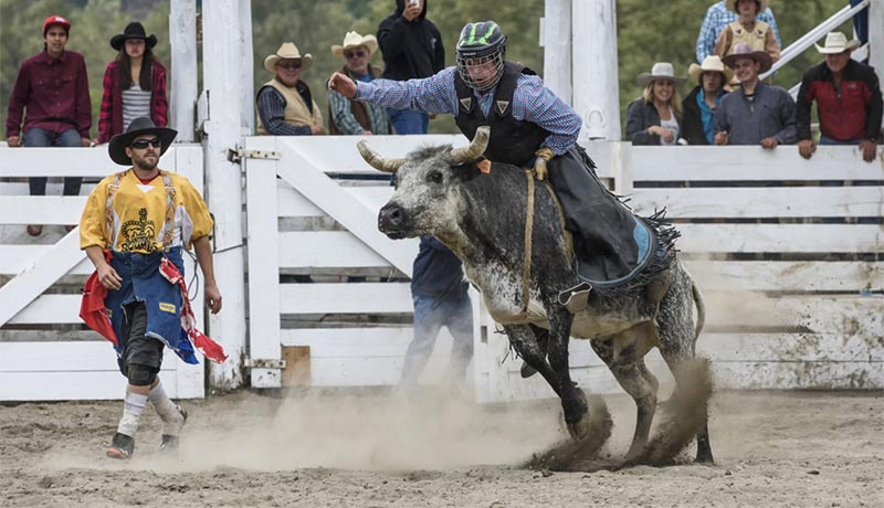 Lillooet Lake Rodeo Bull Riding
