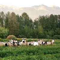 Araxi Longtable Series at North Arm Farms in Pemberton