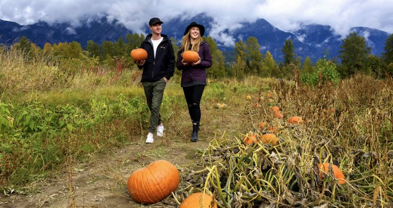 Pemberton Fall Activities