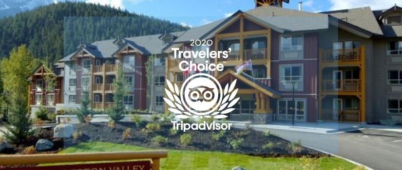 2020 Travelers Choice Award TripAdvisor