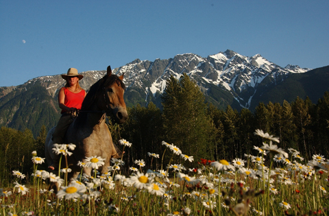 Horseback Riding in Pemberton