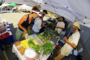 Pemberton Farmers Market Every Wednesday